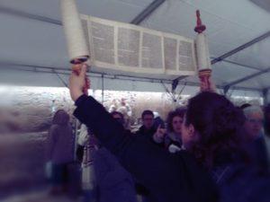 Lifting the Torah at the Kotel